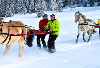 decouverte-du-ski-joering-en-haute-savoie